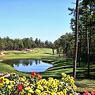 Isabella Golf Course, Hot Springs Village by Dave Nielsen