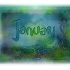 January (from a year full of color) by pentangled