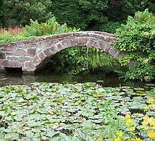 Bridge over pond by susanmcm