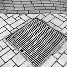 Storm Grate by David Schroeder
