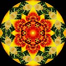 Three Color Kaleidoscope by redhawk