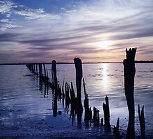 Fish Trap Fence Lines by Steve Chapple