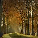 Autumnal Smile by LarsvandeGoor