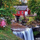 DeCew Falls in Autumn Colours by Rex  Montalban