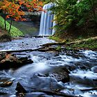 """""""decew falls viewed from below  is worth the rope climb"""" by Rex  Montalban"""
