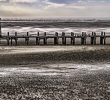 St Annes Pier Head by David Bradbury