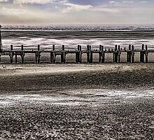St Annes Pier Head by David Bradbury