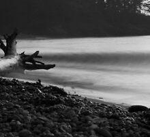 Beach- Widbey Island 09 by Will Scharffenberger