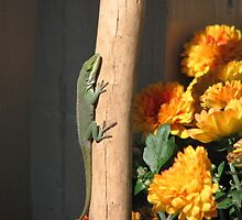 Anole For Fall by JeffeeArt4u