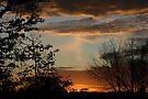 Goodnight Sun... by Ainsley Kellar Creations