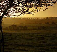 Buckinghamshire sunset by George Parapadakis (monocotylidono)