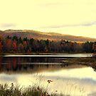 Fall At Pillsbury State Park 2, Washington, NH by Len Bomba