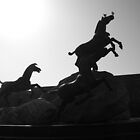 Horse statue in silhouette  Terracotta Warriors, Xian, China by maddie5