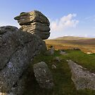 Dartmoor: The View from Heckwood Tor by Rob Parsons