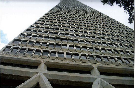 TransAmerica Building-San Francisco by RobynLee