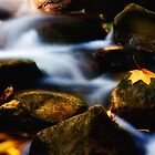 autumn rivulet by nordvil