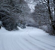 Winding Winter Road by petegrev