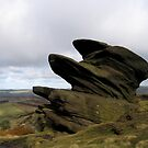 The Roaches by mikebov