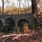 Cuivre River State Park Stone Bridge by Sherry Hunt