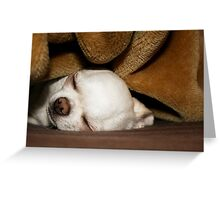 The Children Were Nestled All Snug In Their Beds - 9 years old Greeting Card