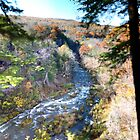 Chittenango Creek from the Top of the Falls by photoescapist
