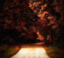 Fall Road by Theodore Black