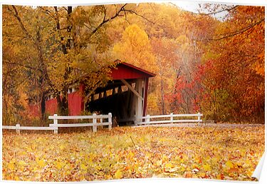 Autumn Stroll by Sandy Woolard