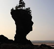 Rock Face Profile, St. Martins by Jamie Roach