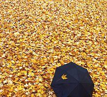Autumn Umbrella by David Piszczek