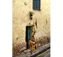 Cusco, Peru 2098 Photographic Print