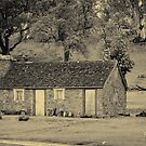 The Old Farmhouse by Lisa Williams