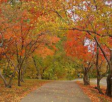 Stroll In The Park by Wanda Raines