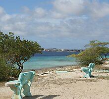 blue benches at the beach by Dirk van Laar