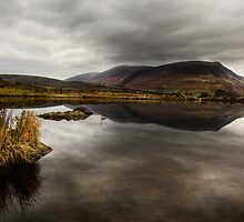 Tewit Tarn #3 by David Robinson