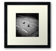 Lonely pigeons in London Framed Print