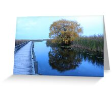 Point Pelee evening Greeting Card