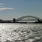 Sunshine on the Harbour by Lisa Williams