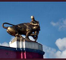 Bullfighter by Dirk Pagel