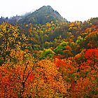 THE CHIMNEY TOPS,AUTUMN by Chuck Wickham