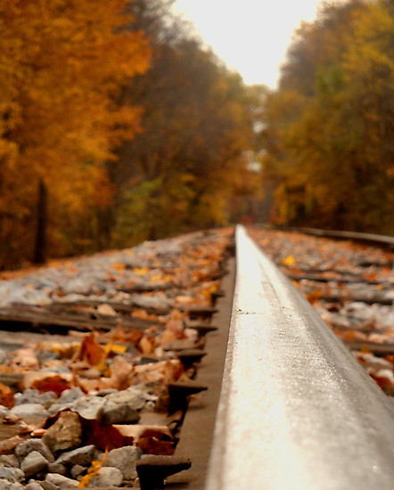 Autumn Tracks 3 by lroof