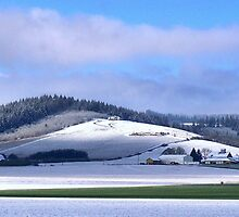 Spring Snow in Hillsboro, OR  by Hiroshi  Maeshiro