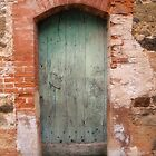 Green Door by Pamela Jayne Smith