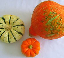 Gourds by kat  -