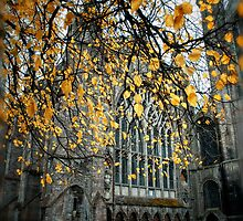 Autumn At Ely Cathedral) by Simon Duckworth