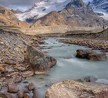 Mount Athabasca, Alberta, Canada. by Philippe Widling