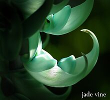 Jade Vine hand by Susan Kelly