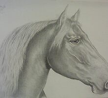 Horse drawing in canvas-like paper by Noel78