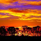 Northern Plains Sunset by Clive