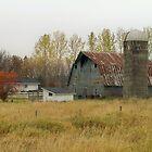 Rusty Roof Barn by Diane Trummer Sullivan