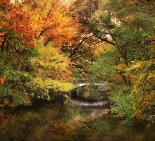 Autumn on The River 2 by Jessica Jenney